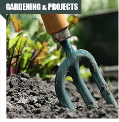 Gardening & Projects