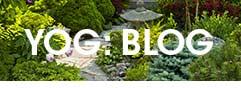 Main Blog Page