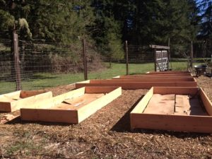 Empty Raised Beds