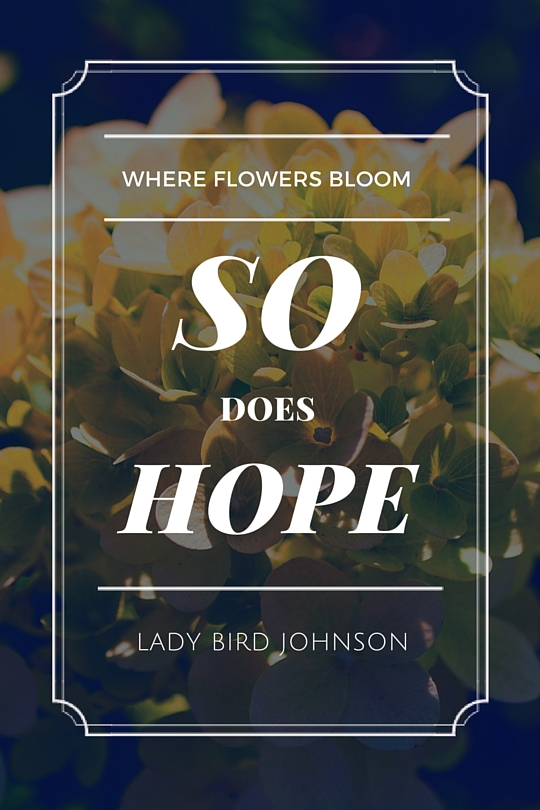 Gardening Quote by Lady Bird Johnson Limelight Hydrangea Glenwood Oregon Lane Forest Products design and photography bycalvinchance