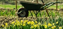 Gardening in April