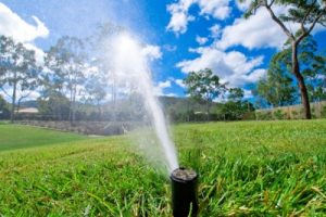 Irrigation for the Lawn