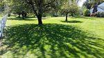 Matt Pyle Landscape Maintenance