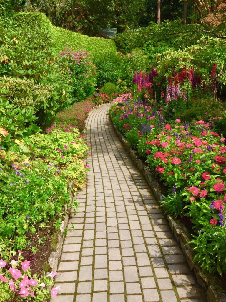 Pathways are an excellent place to stagger plants that have different light requirements. Photo by: Lisa MacMaster