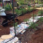 Garden Paths Sheet Mulch