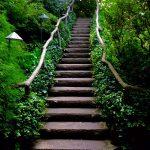 Butchart Gardens 04