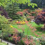 Butchart Gardens 06