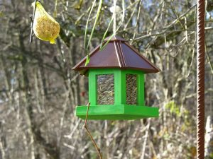winter-bird-feeder