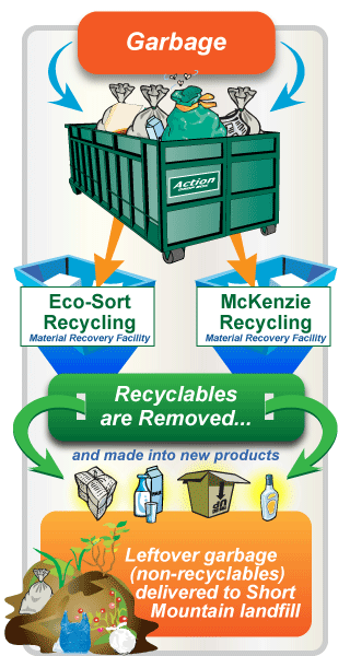 garbage infographic