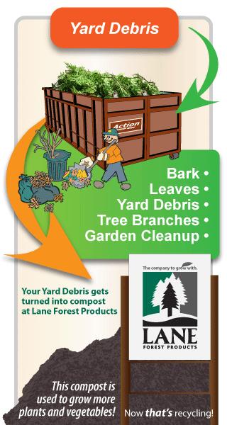 yard debris infographic